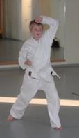 karate_2010_07_02_0008_cut