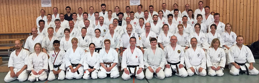 Seminar mit Patrick McCarthy Hanshi am 30.5.2015 in Haßloch