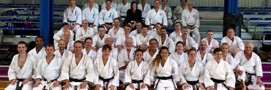 Seminar mit Patrick McCarthy Hanshi am 09. & 10. Juli 2016 in Straßburg