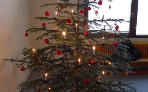 Gürtelprüfung und Weihnachtsfeier am 17.12.2016