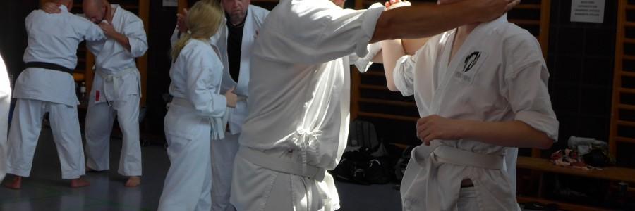 Karateseminar Haßloch am 2. und 3. September 2017